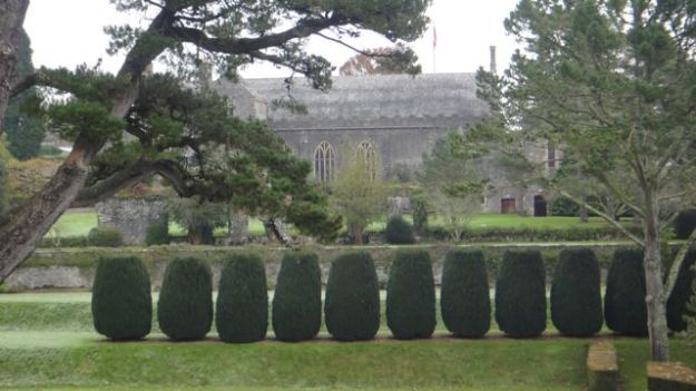 A row of topiaried Irish yew trees (estimated to be from the 1840s) called The Twelve Apostles.