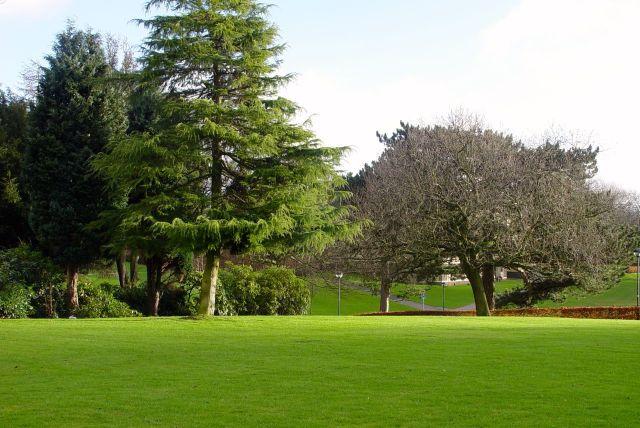 The gardens.