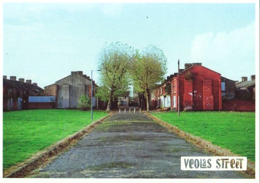 The Welsh Streets Home Group have proposed a community orchard, kitchen gardens, water collection and outdoor cooking for this area.