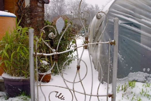 Through the lovely gate. Not even the fox has stepped on this snow.
