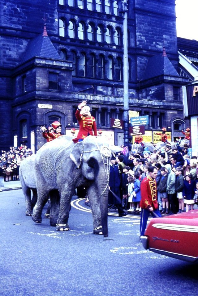 Same riders, same lead elephant, back of same car - 1966.