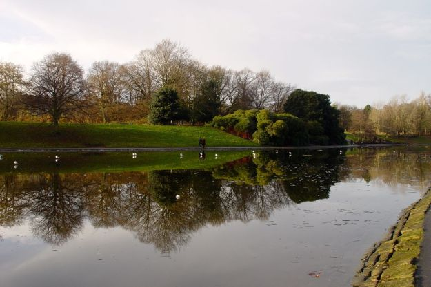 Around the lake in Sefton Park, part of today's run.