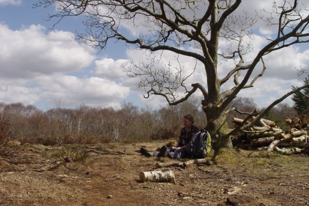 We stop for lunch on the open heathland.