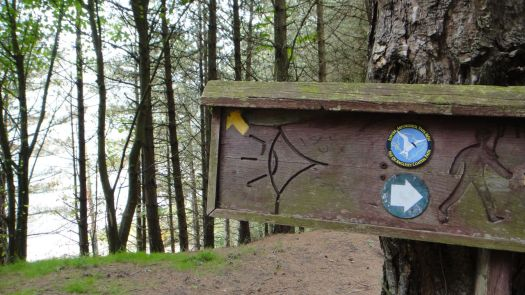 As well as being on this Nature Trail, we're also on part of the Anglesey Circular Walk here.