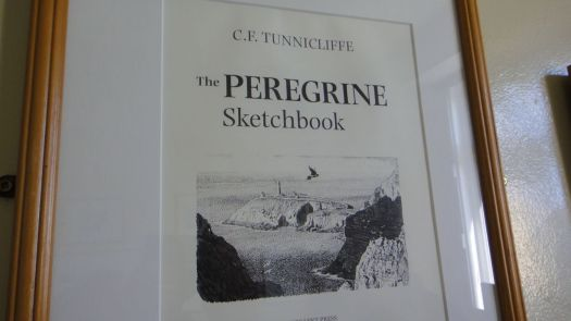 Classic illustrations of birds around here by CF Tunnicliffe.