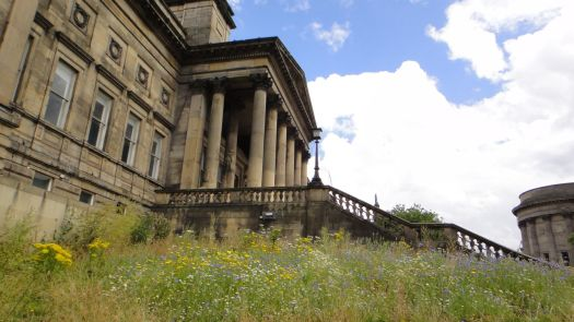 ... and grand porticos and wildflowers.