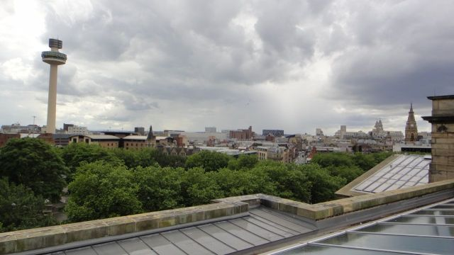 View from the roof of the library.