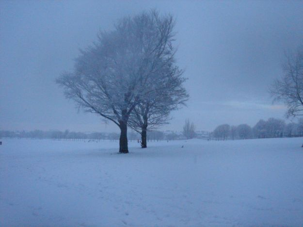 And sometimes in the winter it even manages to look mysterious.