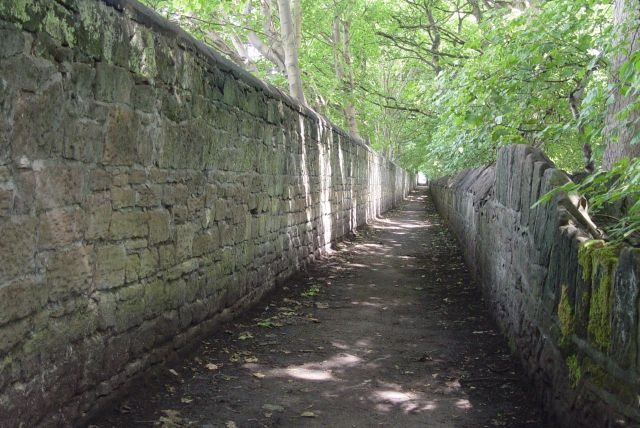 Along this 'secret' path down the side of where 'Dowsefield' used to be.