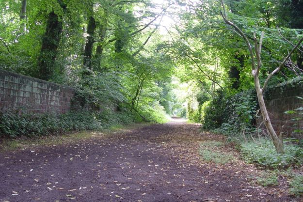 To one of Liverpool's loveliest hidden lanes.