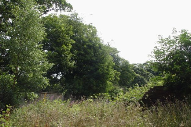 And walled garden.