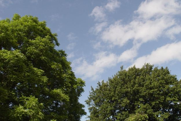 Sefton Park4