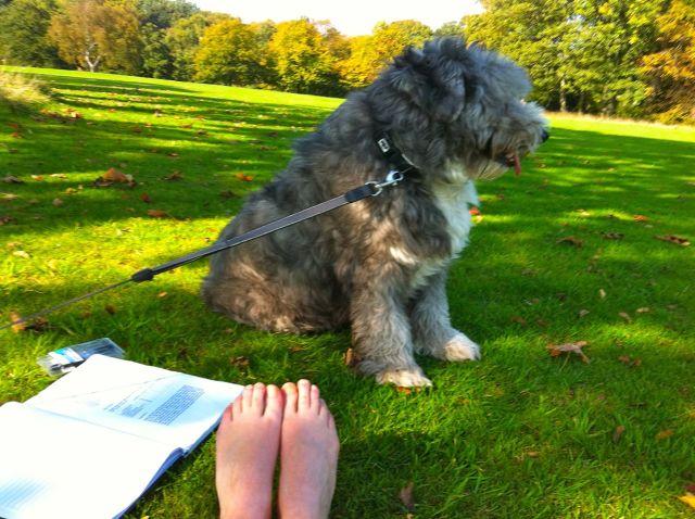 Sarah Jones, and her dog. Doing work she loves