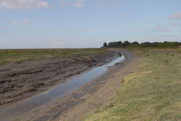 Marshlands26