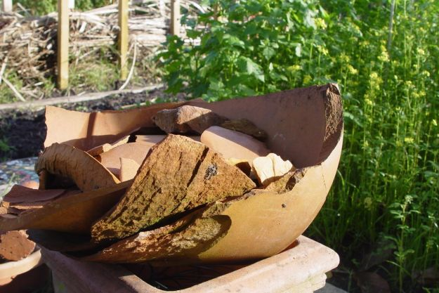 The old pots broken by time and frost.