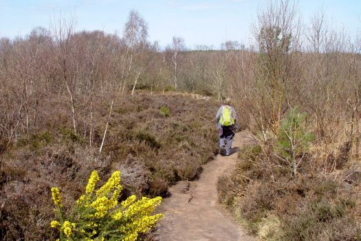 Thurstaston Common.