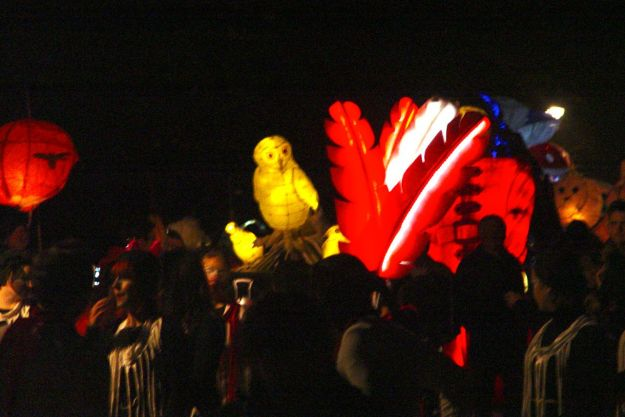 Dancing with their illuminated feathers.