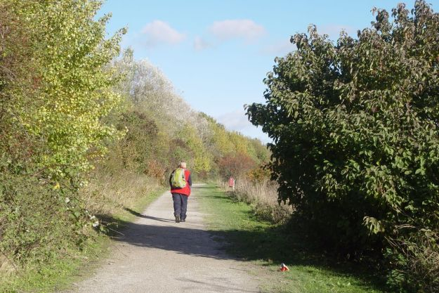 An idyllic country walk?