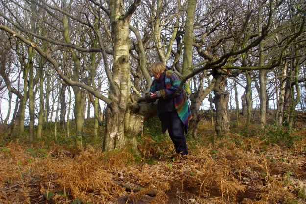 Sarah collects some dry bark. Good to use for starting fires on her allotment.