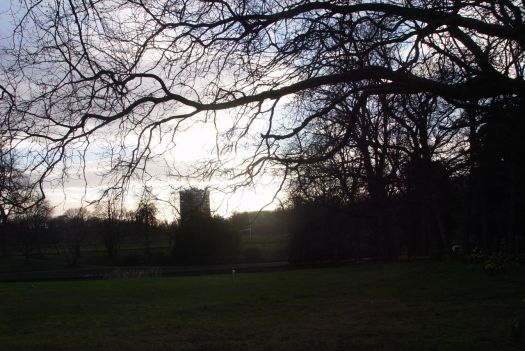 Looking across Greenbank towards Sefton Park and the sinking sun.