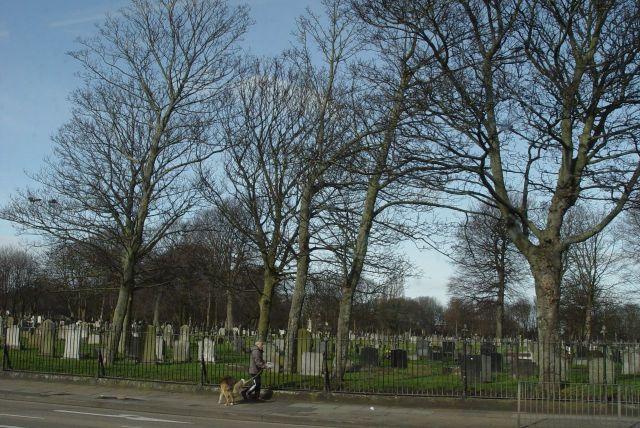 Along Longmoor Lane Aintree, past Kirkdale Cemetery. Yes, I realise it's not in Kirkdale.