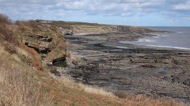 Coast at Howick