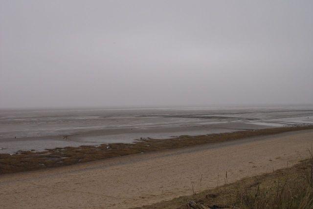 And finally, the Shining Shore.