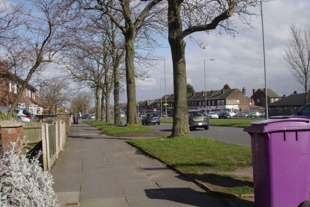 They're around the edges of the estate, like here back on Muirhead Avenue.