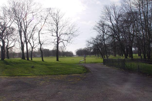 Across the park.
