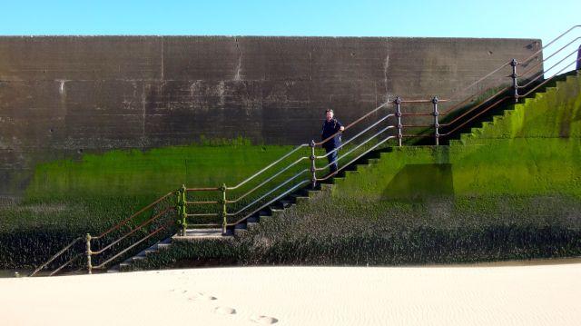 The Harrison Drive sea wall again, plus me.