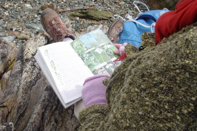 She has her 'Collins Book of British Wildflowers' with her, of course.