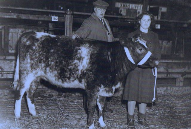 Joe Capstick and his daughter Margaret at a Livestock Show in Stanley Abattoir, 1946.