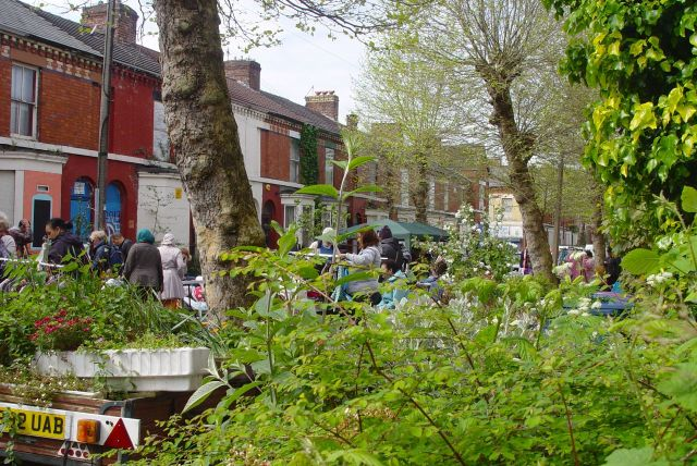 And as well as people, the spring street is filling up with foliage.