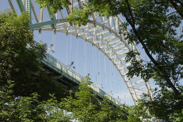 We walk under the bridges here on the Runcorn side.