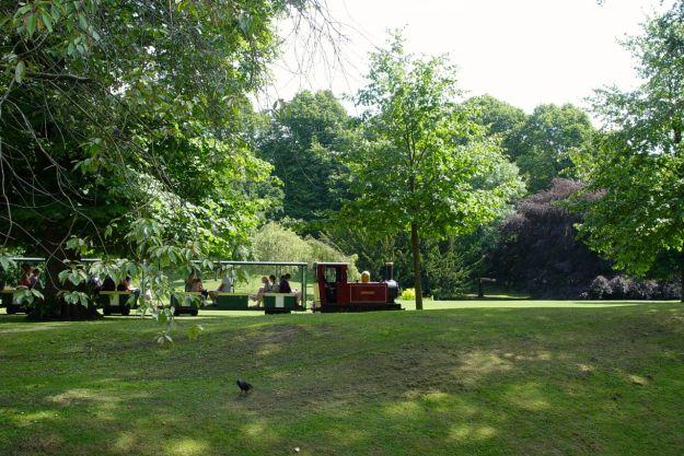 Into the municipal splendour of the Pavilion Gardens.