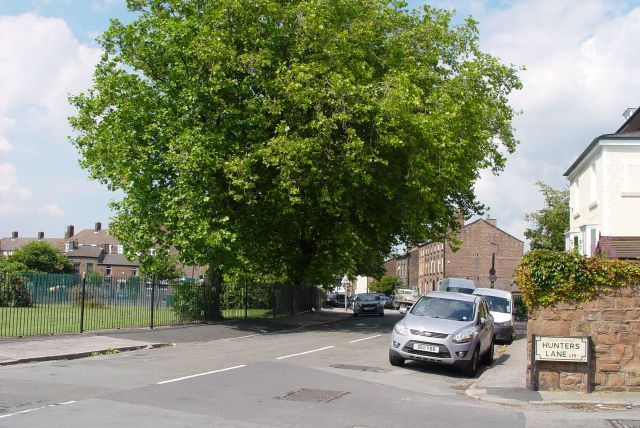 Along Prince Alfred Road, formerly Cow Lane.