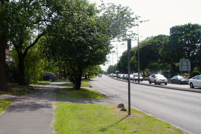 Along Queen's Drive, the ring road.