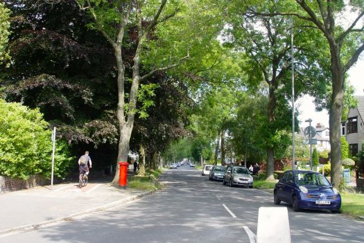 Past leafy suburbia.