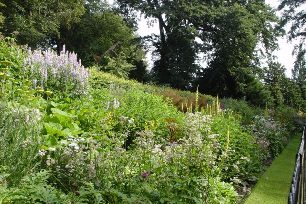 Into Calderstones Park where the borders are in high summer flowering.