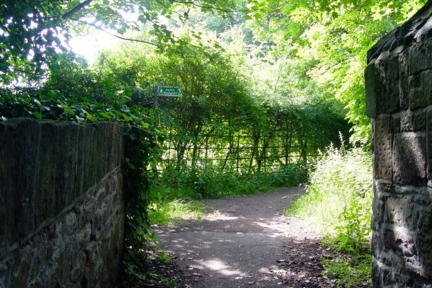 Which leads to further hidden pathways.