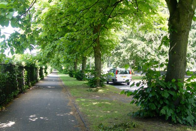 Though in high summer even Menlove Avenue looks relatively rural.