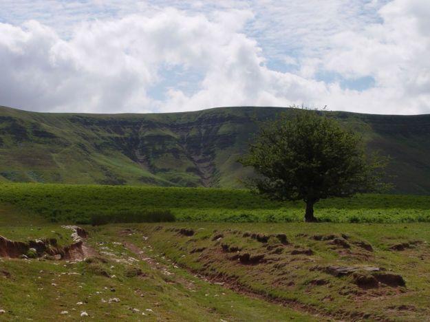 Deep into Wales, into Powys.
