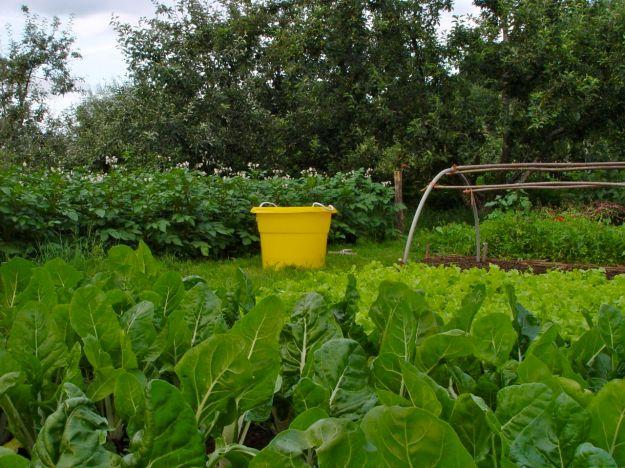It's a working organic farm.