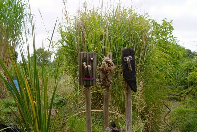 Watched over by the Allotments permanent inhabitants.