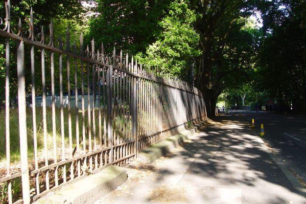 Along Greenbank Lane.