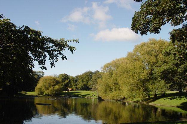 Through Greenbank Park where autumn is also beginning.