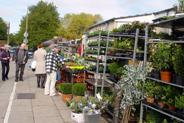And this huge plants stall is still over here in its traditional place.