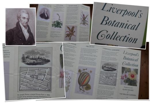 Liv Bot leaflet