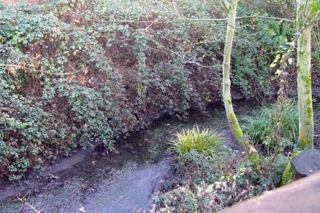 Where the Osklesbrook flows.