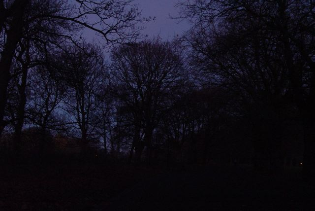 Through Sefton Park in the dark.